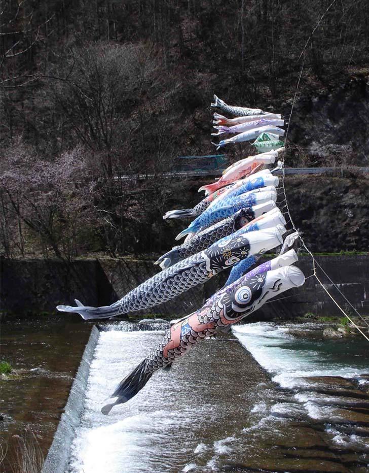 川上村TC-25 川上村の鯉のぼり②