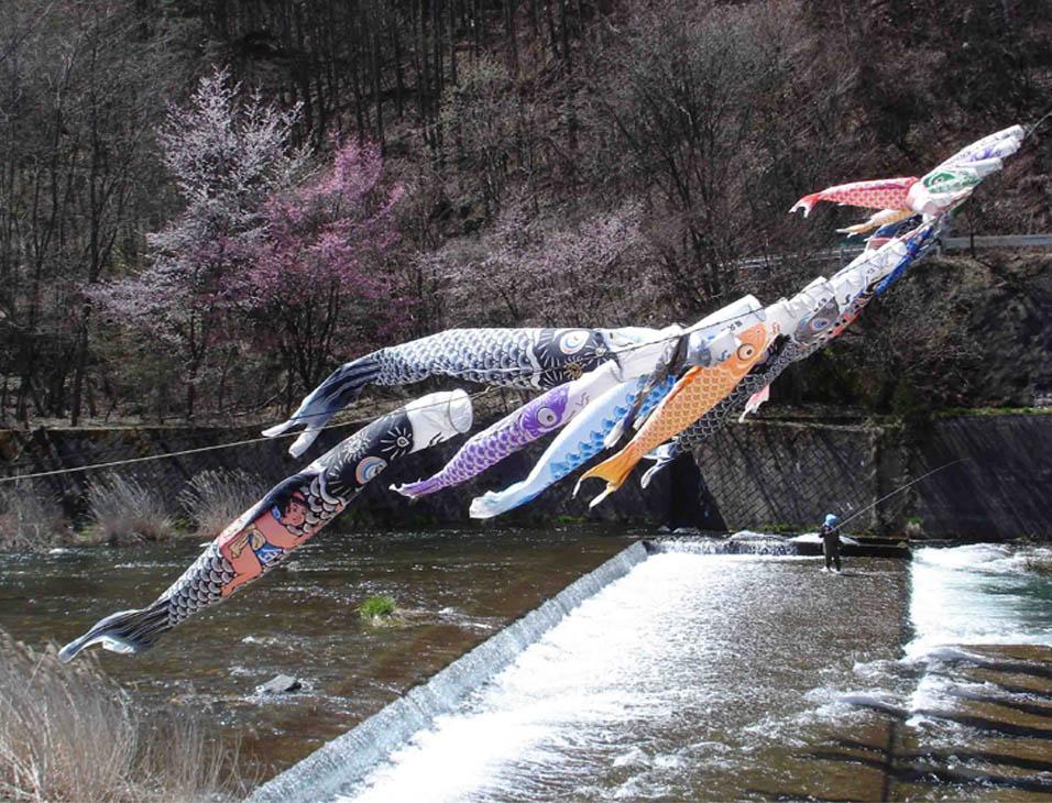 川上村TC-27 川上村の鯉のぼり④