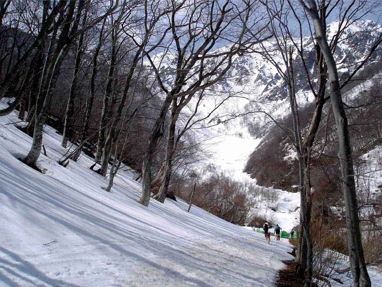 雪中訓練(8) マチガ沢