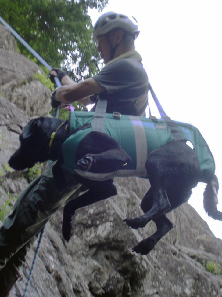 犬と懸垂下降①(肩掛け)