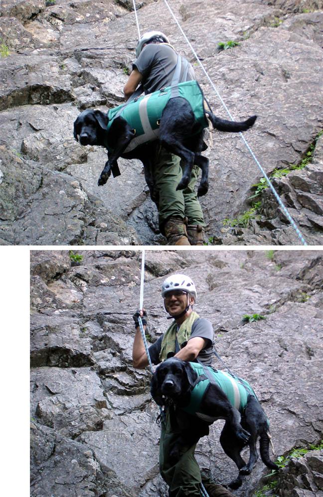 犬と懸垂下降③(肩掛け)