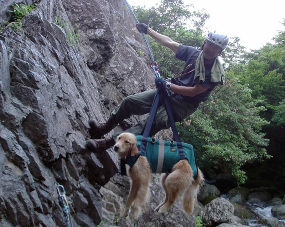 犬と懸垂下降⑥(下降器掛け)