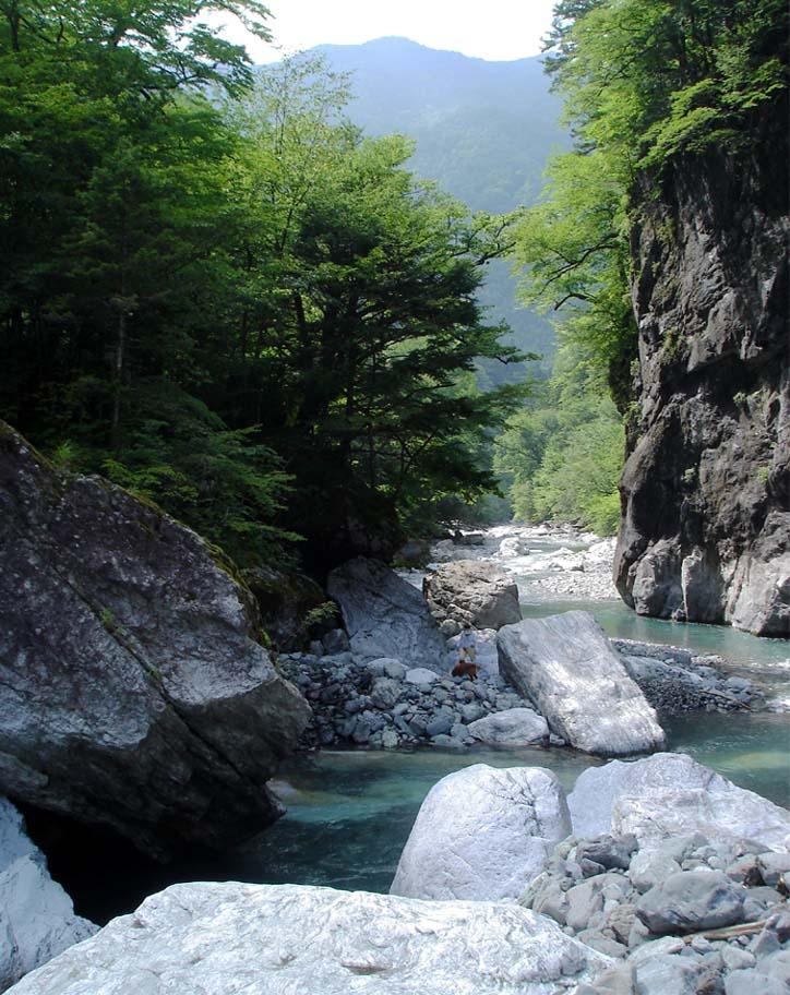 三峰川 20100816(4)