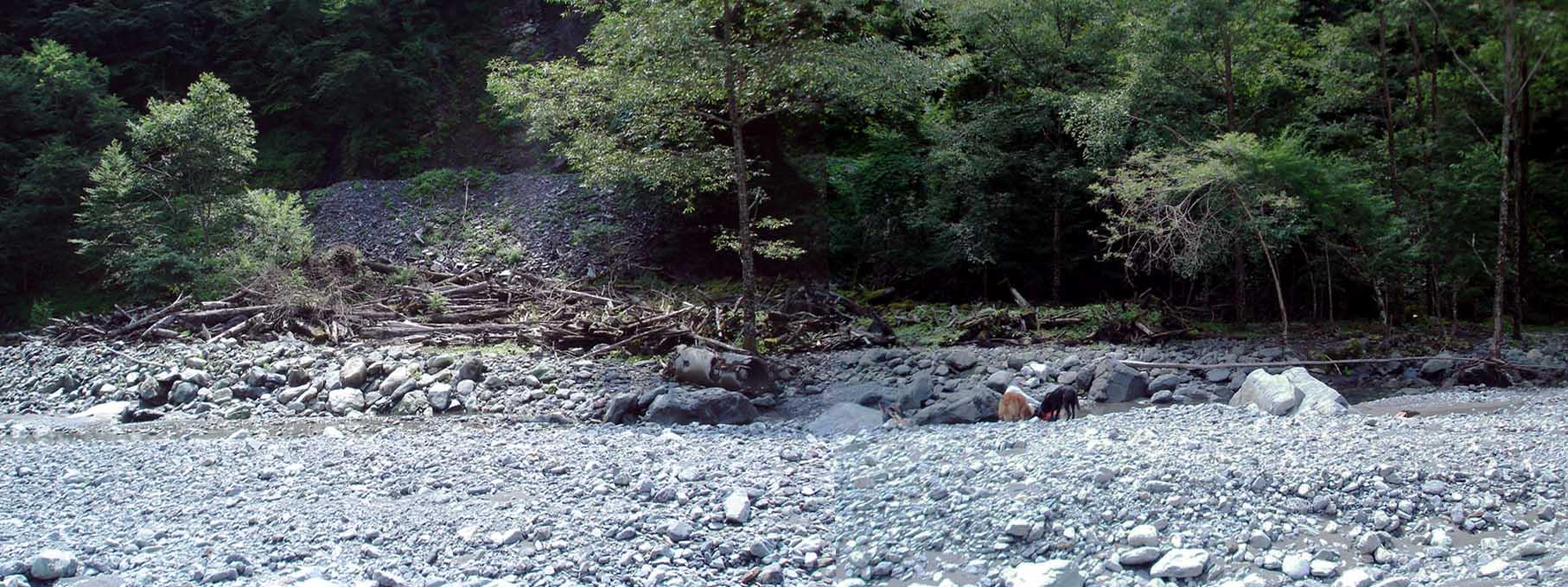 三峰川 20100816 昨年のチャンス訓練場所