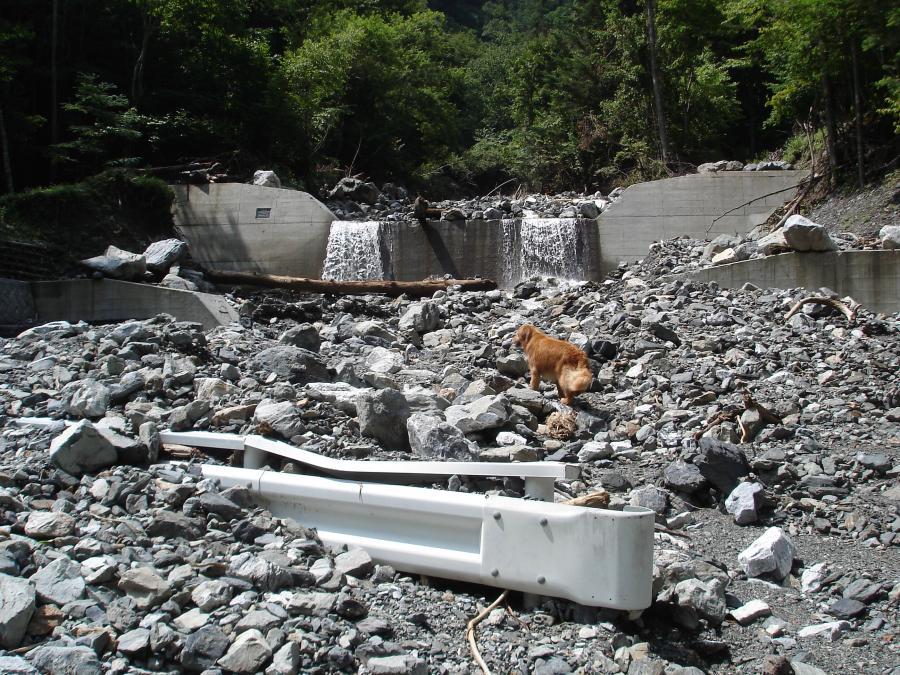 三峰川 20100816(12)