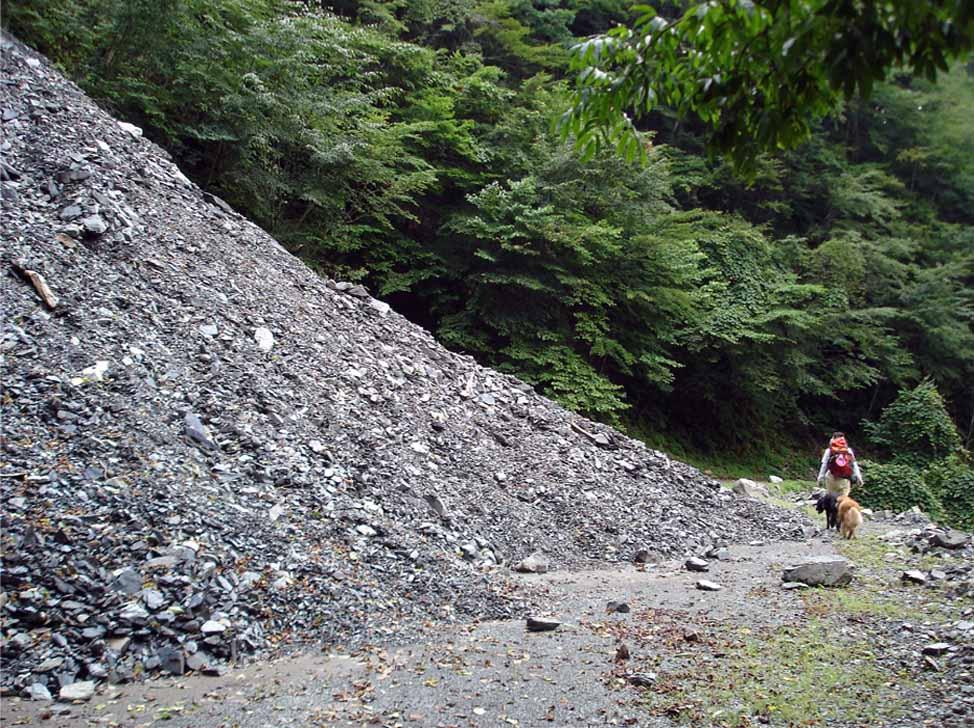 三峰川 20100816(26)
