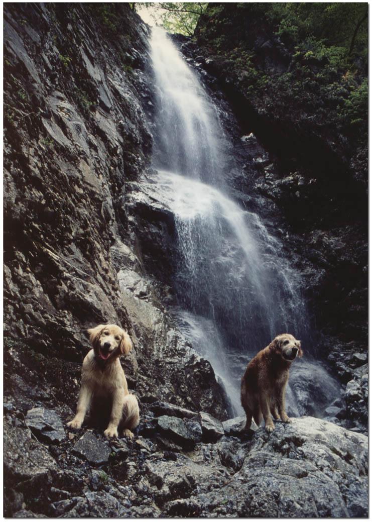 2003年5月の三峰川Ⅲの③ BLG