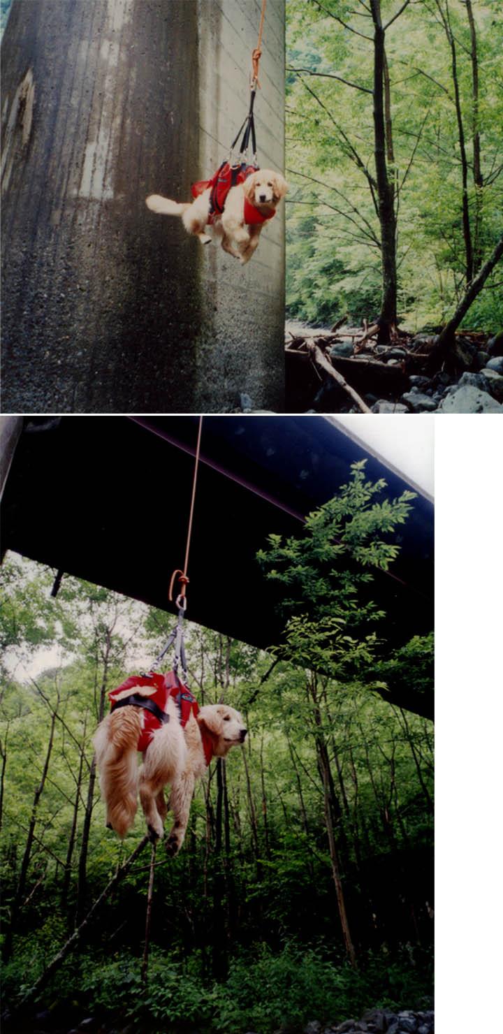 2003年7月の三峰川 ②