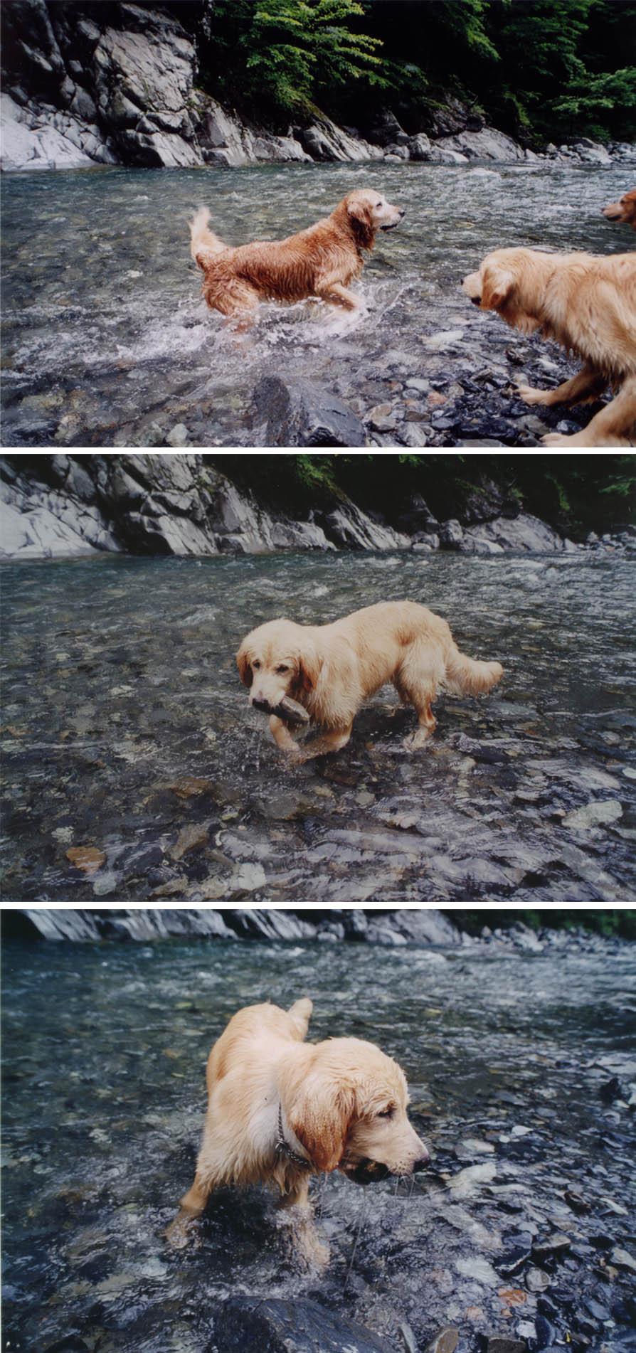 2003年7月の三峰川 ④