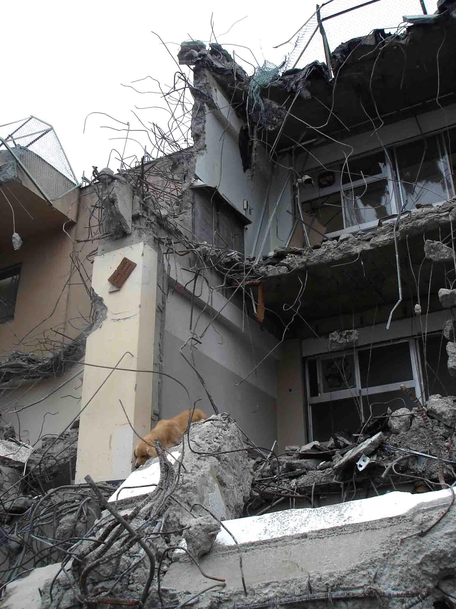 Dsc06029 午後の瓦礫捜索②
