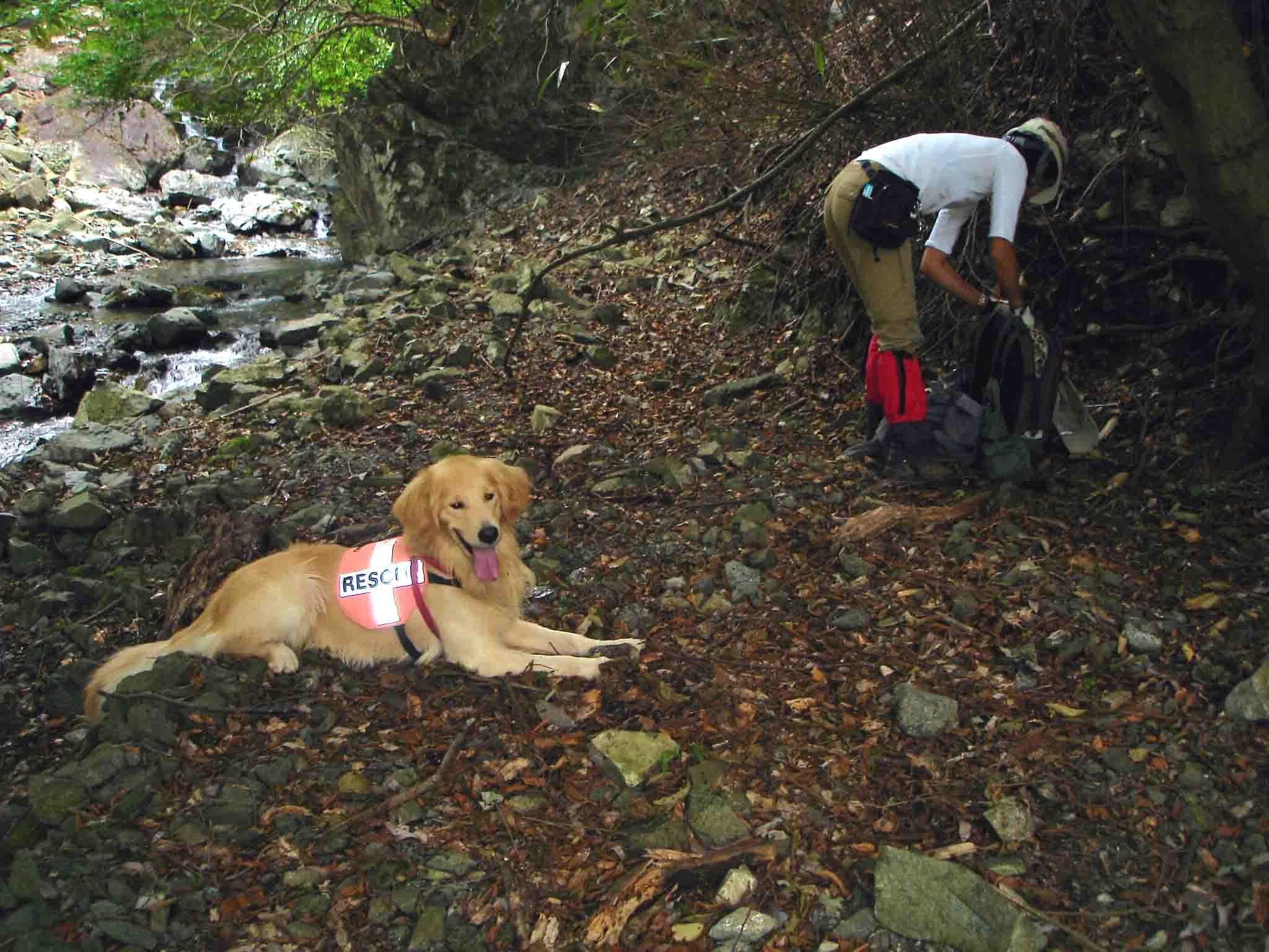 チャンス4歳の丹沢④ 戸沢堰堤上流で小休止