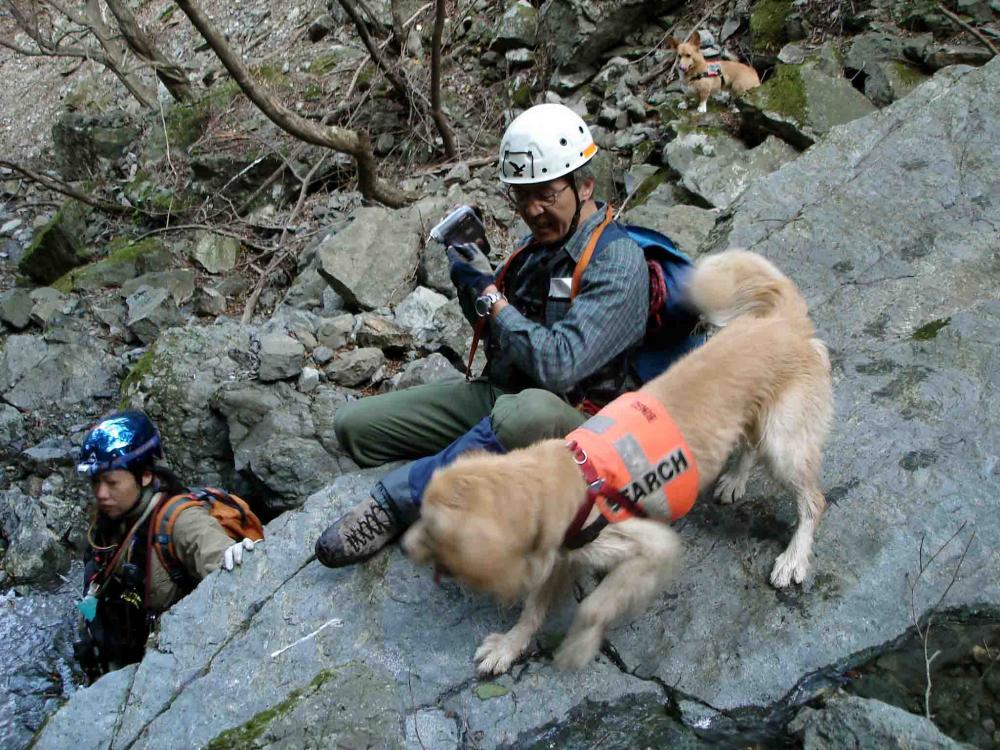 チャンス4歳の丹沢⑧ 岩越え