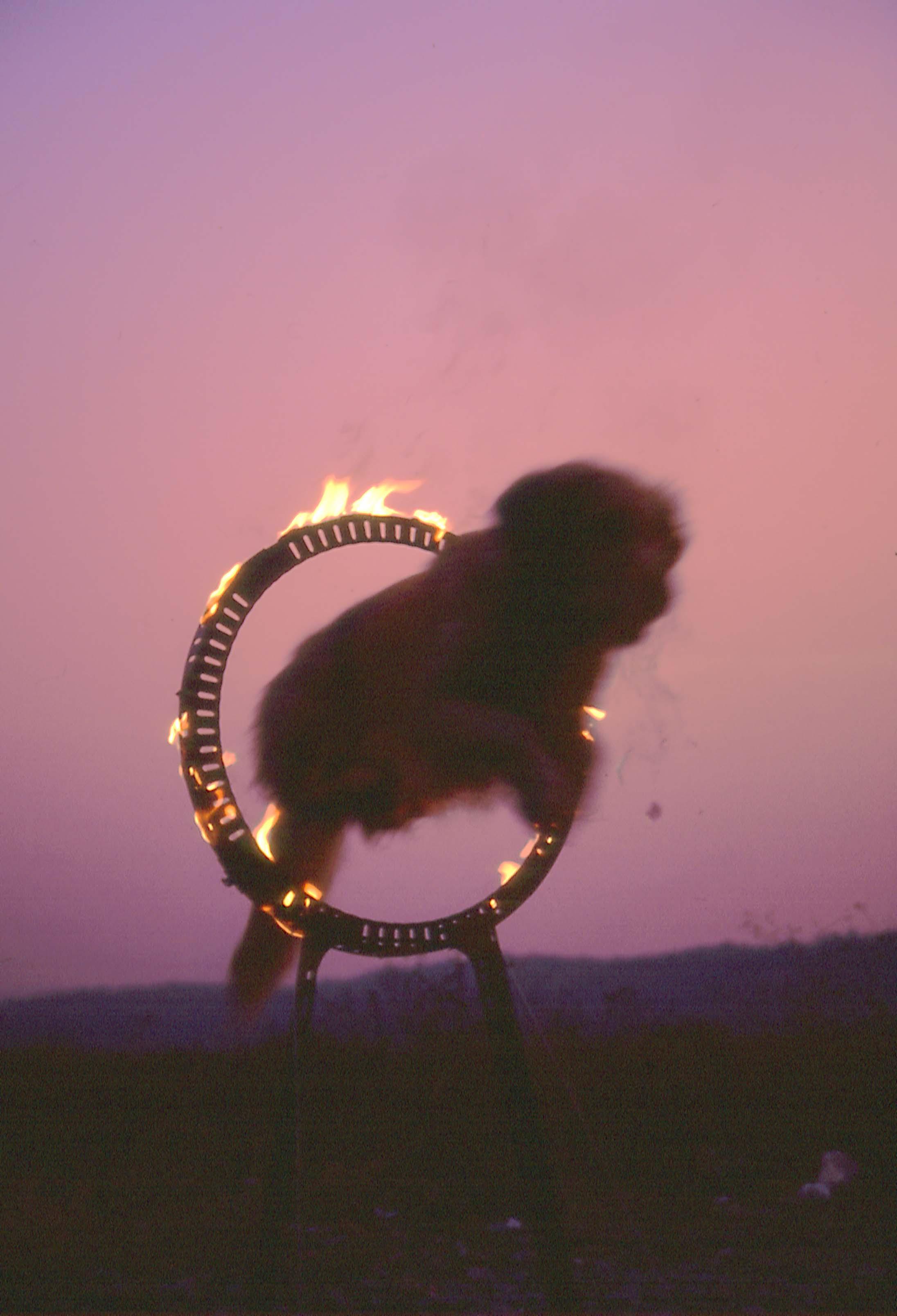 火の輪くぐり⑥