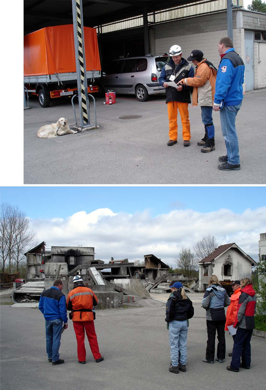 スイス救助犬試験開始前の様子