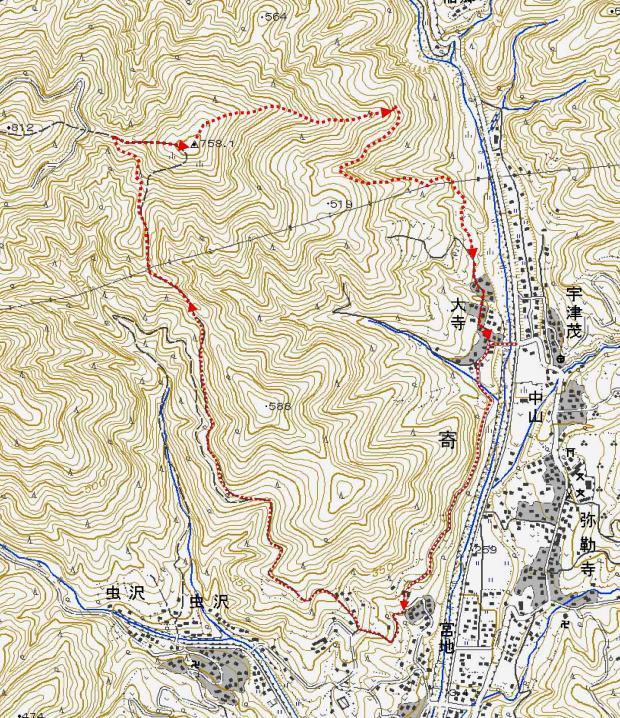 丹沢シダンゴ山 20101223 足跡図