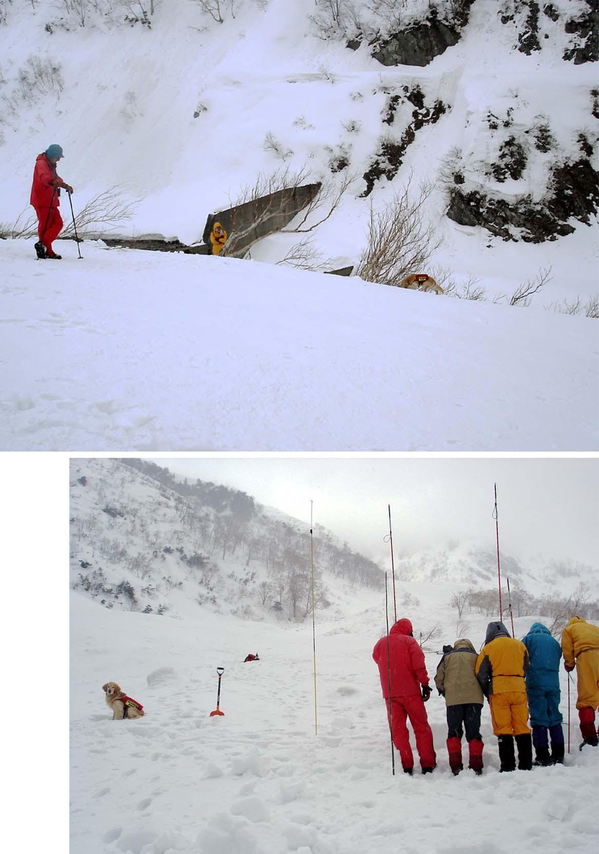 抜戸岳捜索(2009.4.4)