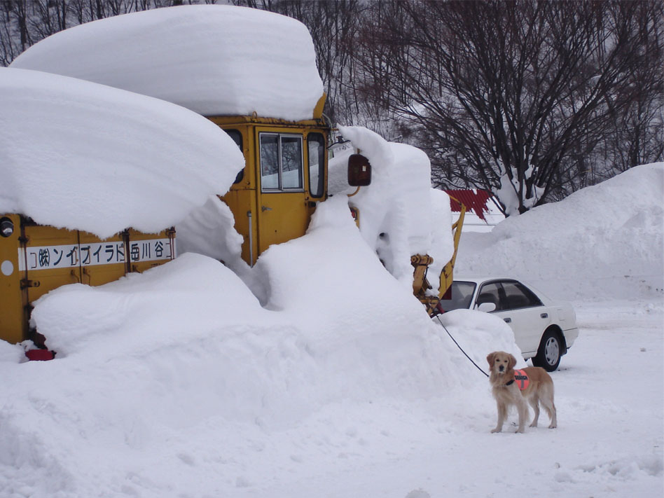 雪崩講習会とチャンス①(2006)