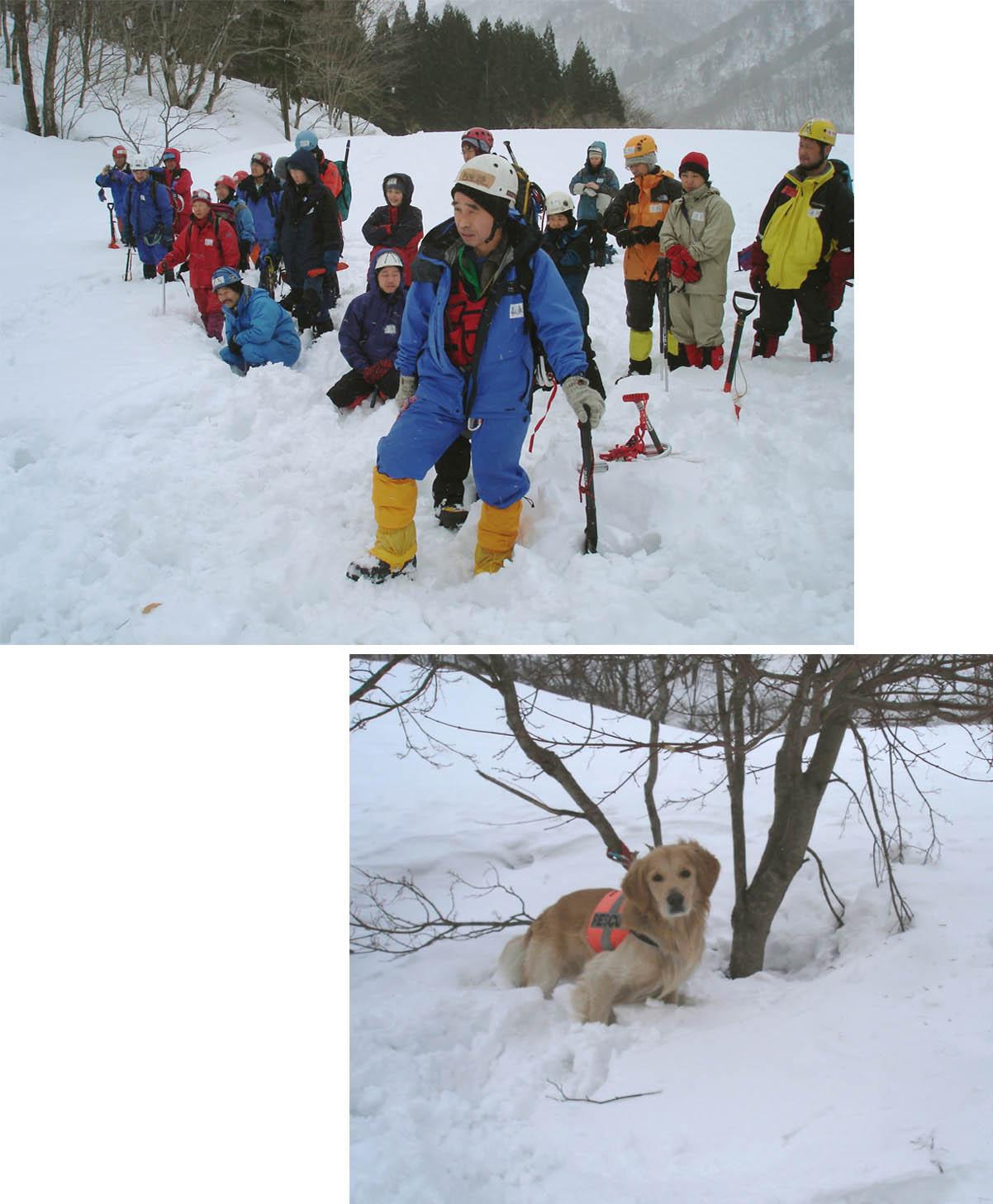 雪崩講習会とチャンス②(2006)