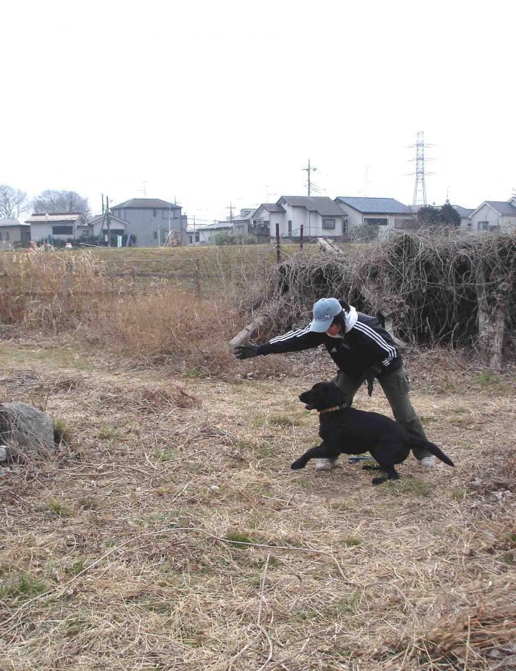 20110206 訓練模様①