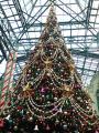 東京ディズニーランドクリスマスツリー1(ワールドバザール)