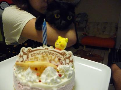 ケーキとニケ