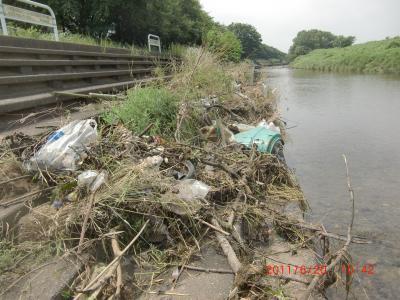 柳瀬川の清掃CIMG3701_convert_20110620202812