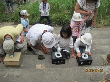 顕微鏡観察IMG_5530_convert_20110626005331