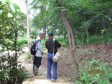 文化の森IMG_5801_福生convert_20110704233117