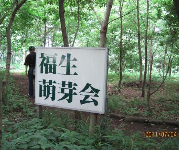 IMG_5775福生市_convert_20110704233536