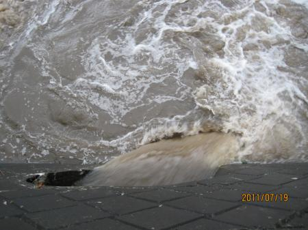 IMG_6002空堀川への雨水口_convert_20110719225056