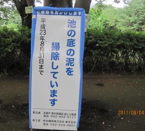 IMG_6221金山の泥さらい_convert_20110820232104