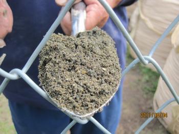 IMG金山の泥さらい_6228_convert_20110820235322