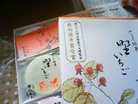 NEC_923810091.jpg