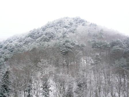 雪が来ました1
