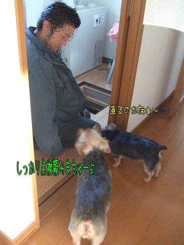091210-yukadan2.jpg