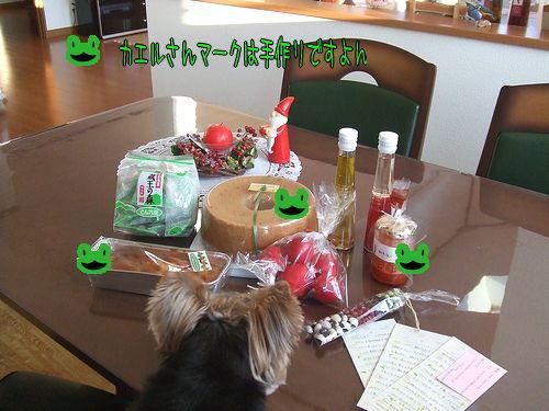 091216-kaneyama1.jpg