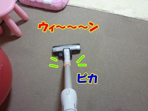 P1060245_20111210212318.jpg