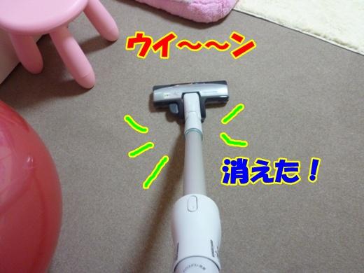 P1060246_20111210212318.jpg