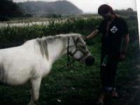 2002年10月5日馬とゆめ
