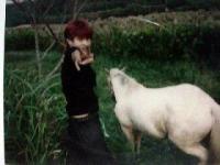 2002年10月5日馬とゆめ2