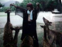 2002年秋 鹿とゆめ