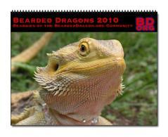 bd_calendar2010.jpg