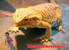 web_christmas_2009.jpg