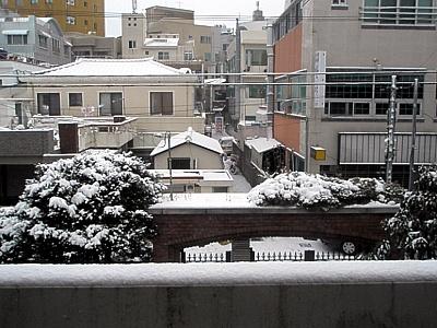 20100113001.jpg
