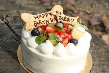 お誕生日cake