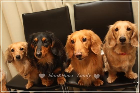 family☆