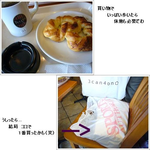 cats_20120118200222.jpg
