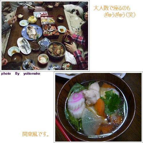 cats_20120118200947.jpg