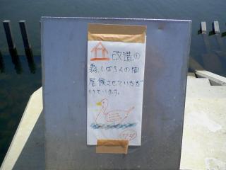 20100501_0004.jpg