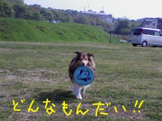 20100504_0000a.jpg